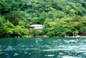 View from the lake, 1980s.