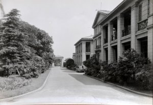 Looking south past garden side of offices  to residence entrance, 1933.