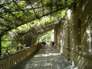 The garden terrace, running the whole length of the State Rooms, adorned with old wisterias, 2005.