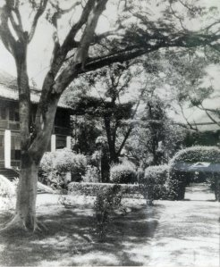 Compound grounds, with the assistant's house on the left, 1900s.