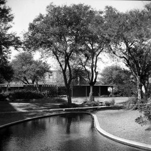 Bottom pool, with local staff block beyond, 1961.