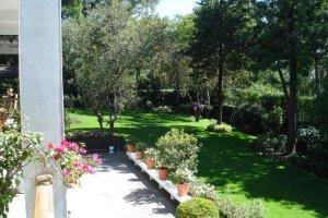View across garden, 2006.