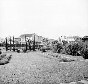 Creating the garden on the extra land, 1953.