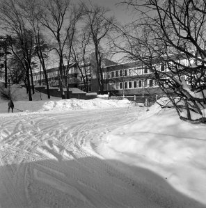 South side of the offices, viewed from within residence grounds, 1966.