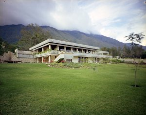 View from the garden, 1973.