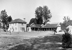 Junior staff house and the offices in the old Post Office, 1954.