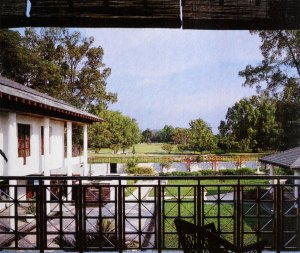 View to the golf course beyond the garden, 1989.