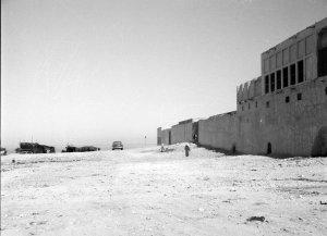 The Wadi site, 1954.