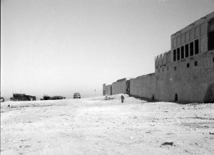 The Wadi site, 1954.